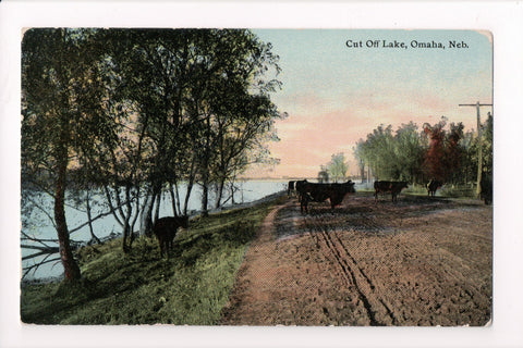 NE, Omaha - Cut Off Lake, with cows in the middle of dirt road - J04120