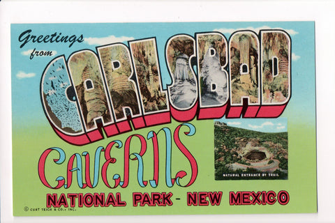 NM, Carlsbad Caverns - Greetings from, Large Letter postcard - B08262