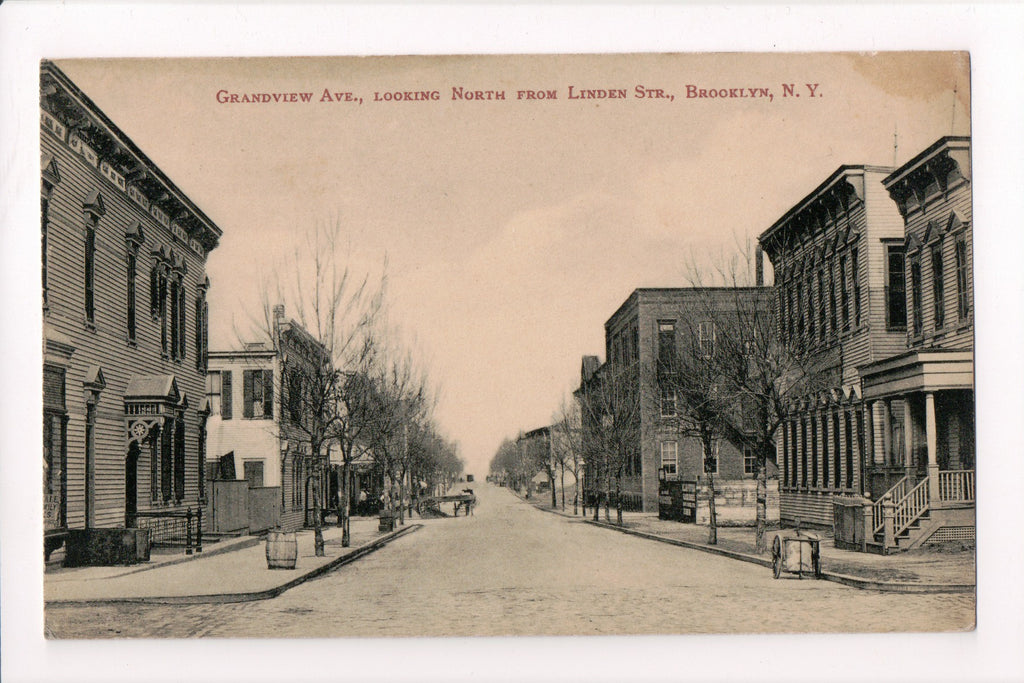 NY, Brooklyn - Grandview Ave from Linden St (ONLY Digital Copy Avail) - B17161