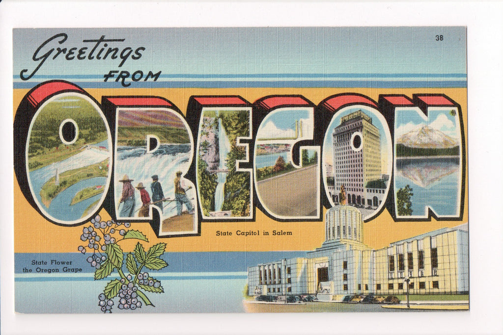 OR, Oregon - Greetings from, Large Letter postcard - B08291
