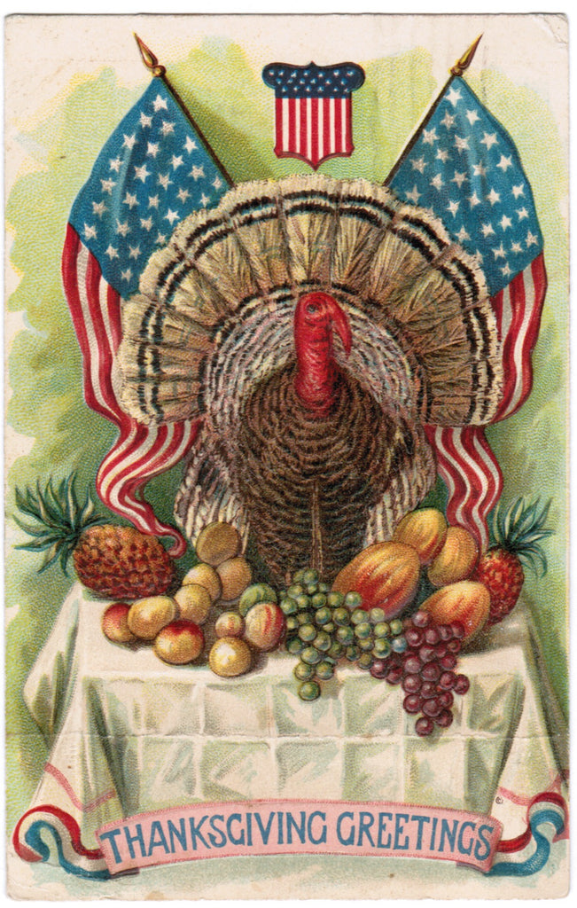 Vintage Patriotic Postcard, Turkey, fuit, flags and shield - PAT C08501