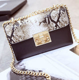 Small Crossbody Bag with Chain Strap