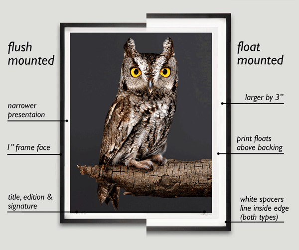 Large Photographic Print Framing Options, Flush Versus Float