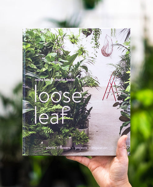 Loose Leaf Book (signed copy)