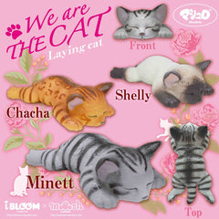 iBloom JUMBO We Are The Cat Laying Cat SCENTED Squishy, So Soft!