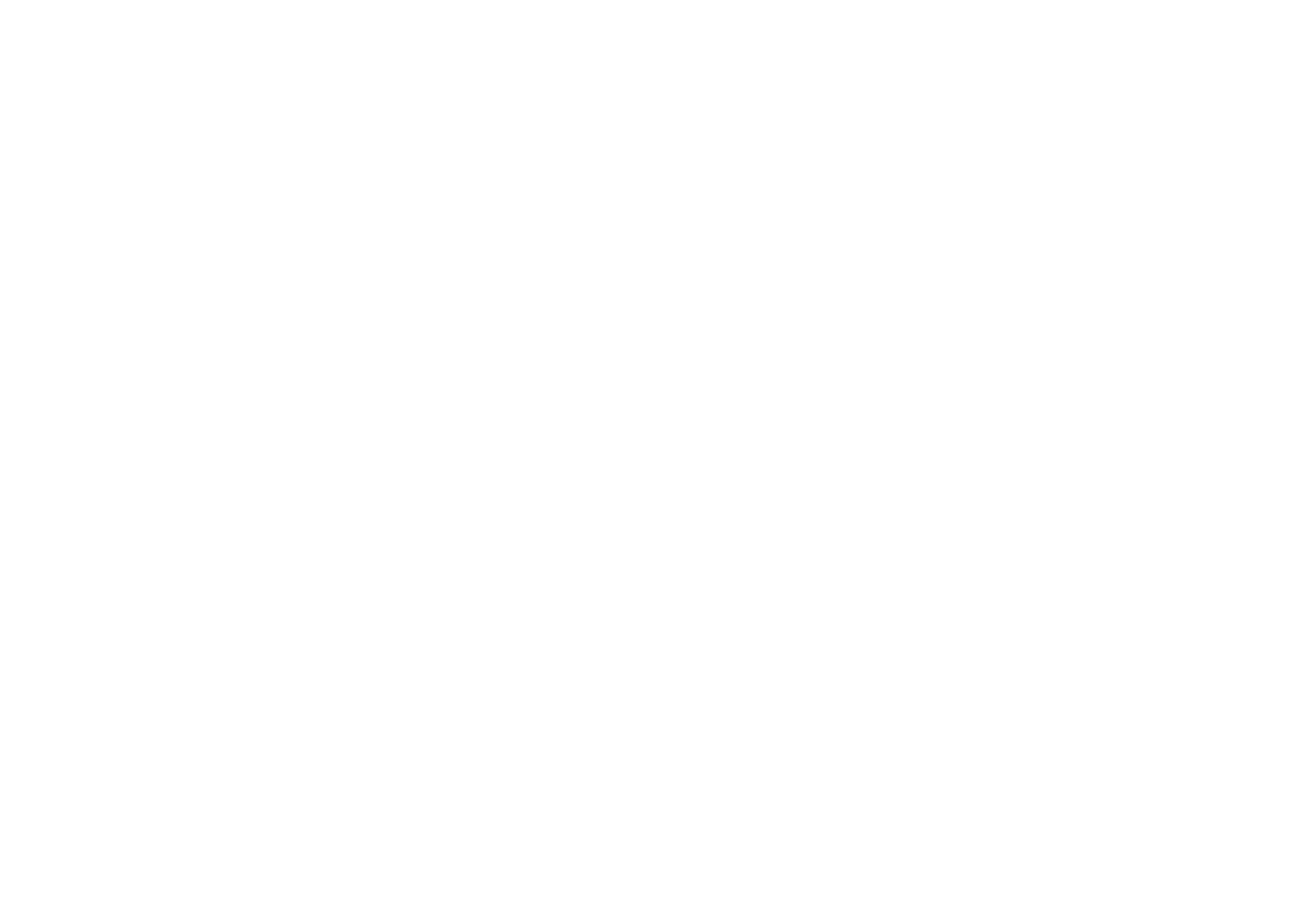 snowballrally