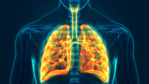 The Connection Between COPD and Sleep Apnea