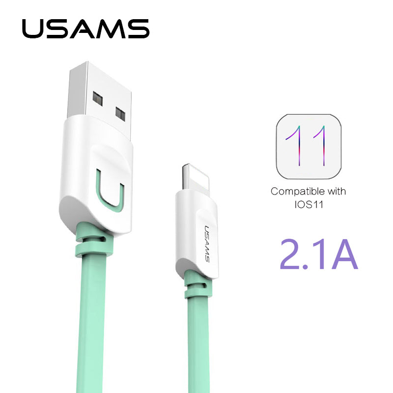 USAMS iPhone Cable