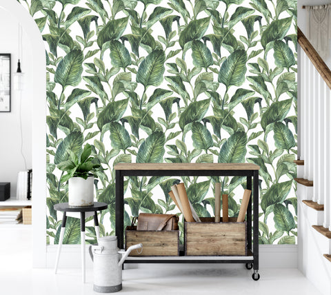 Tropical Green - Old Style - Full Wall Mural