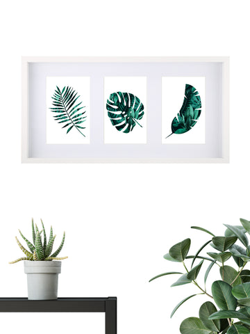 Tropical Assorted 001 - Framed Set