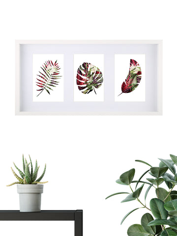 Tropical Assorted 002 - Framed Set