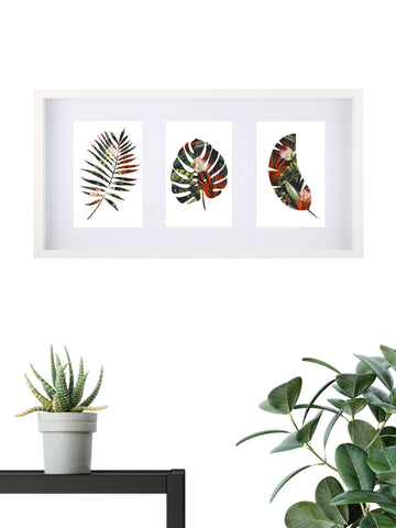 Tropical Assorted 003 - Framed Set