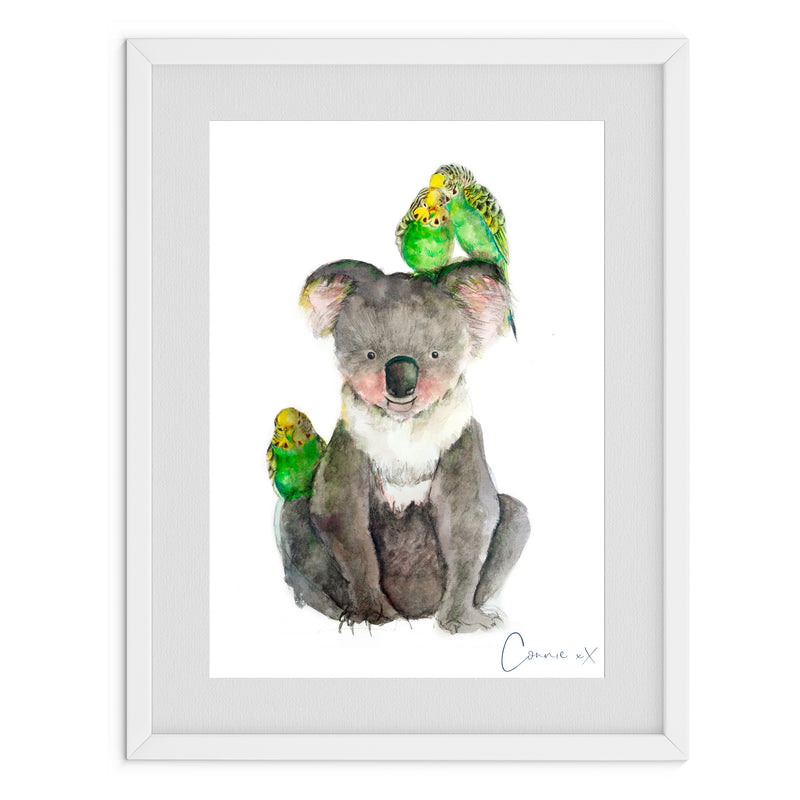Budgie Koala Watercolour Print