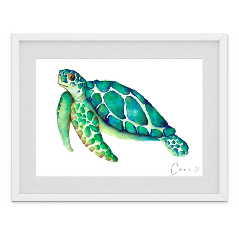 Green Sea Turtle Watercolour Print