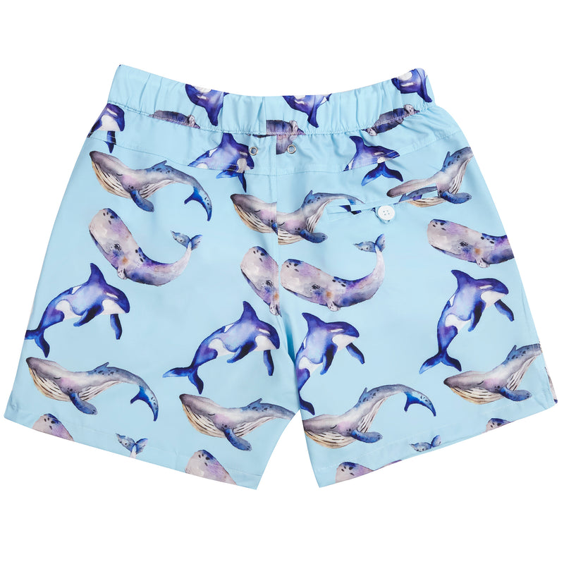 Whales Men's Boardshorts