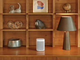 Sonos One SL Twin Bundle White