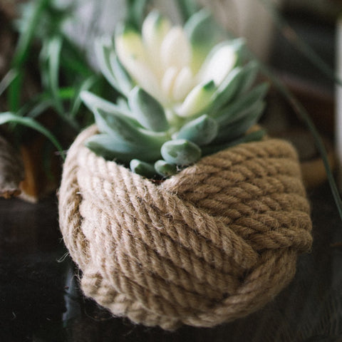 Jute Plant holder, Freeleaf design from For Dignity