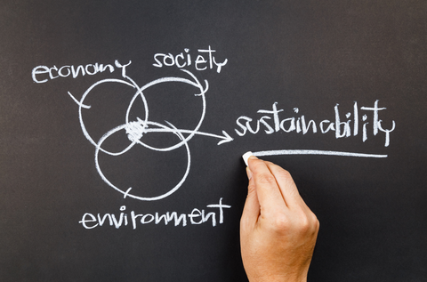 Original definition of Sustainability