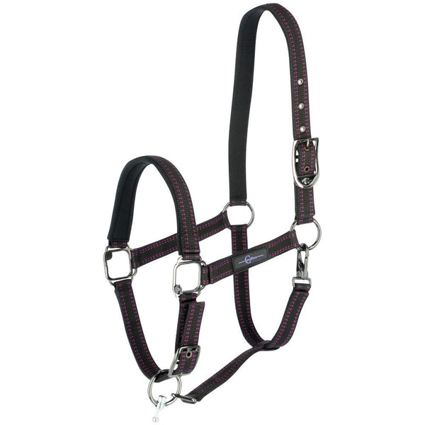 GoLeyGo Black/Pink Halter and Lead Set