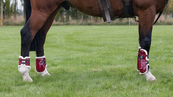 Mini Horse Open Front Boots