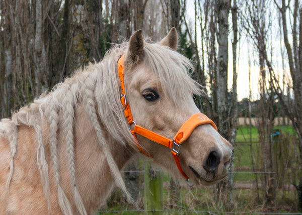 Signature Fleece Halters