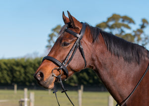 New Supersoft Classic Bridle