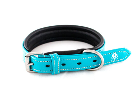 Leather Padded Dog Collars