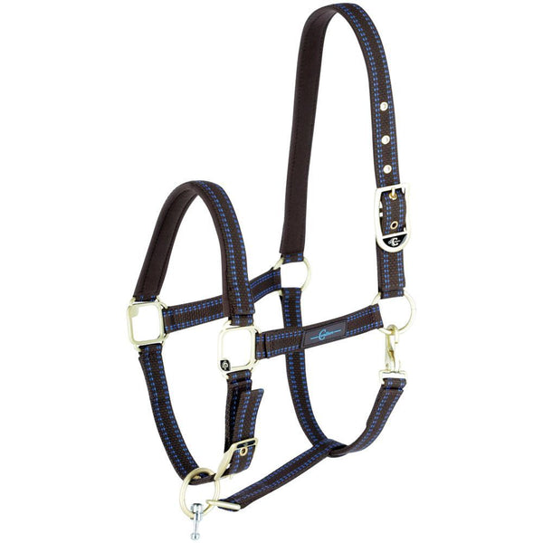 GoLeyGo Brown/Blue Halter and Lead Set