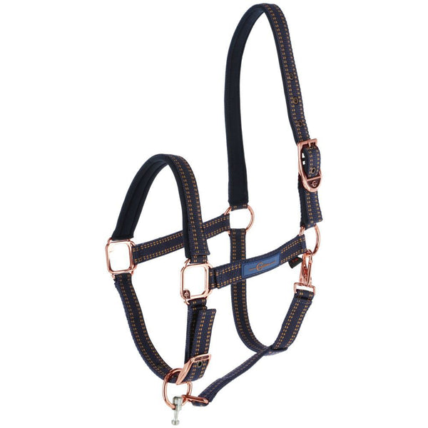 GoLeyGo Rose Gold Halter and Lead Set