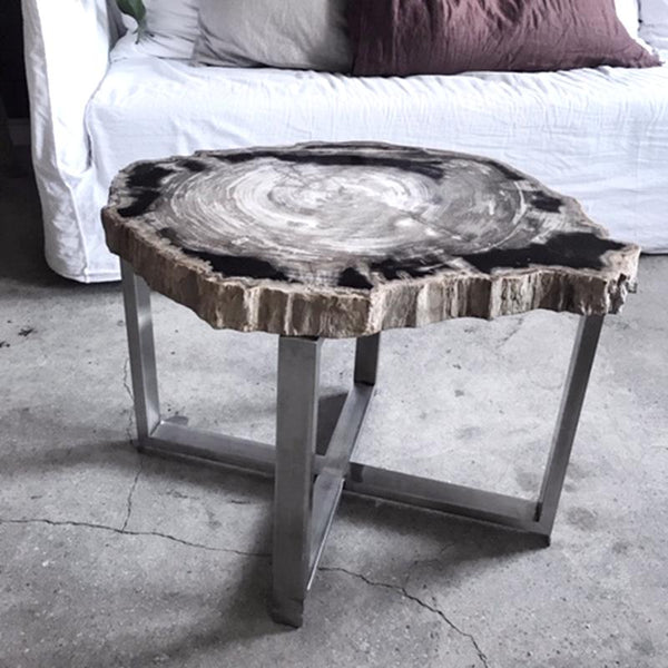 NEW! Petrified Wood Table, mixed colors