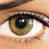 Eyes Of Solotica Natural Avela Coloured Contact Lenses