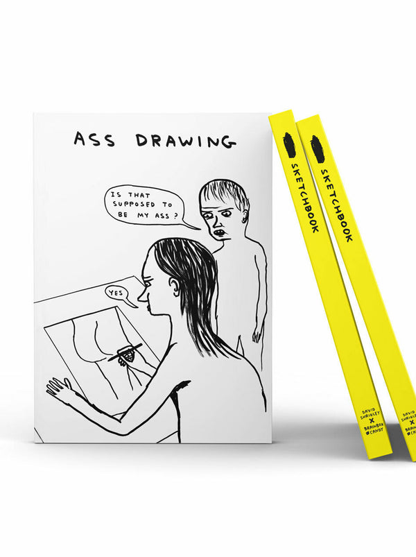 Ass Drawing Sketchbook by David Shrigley