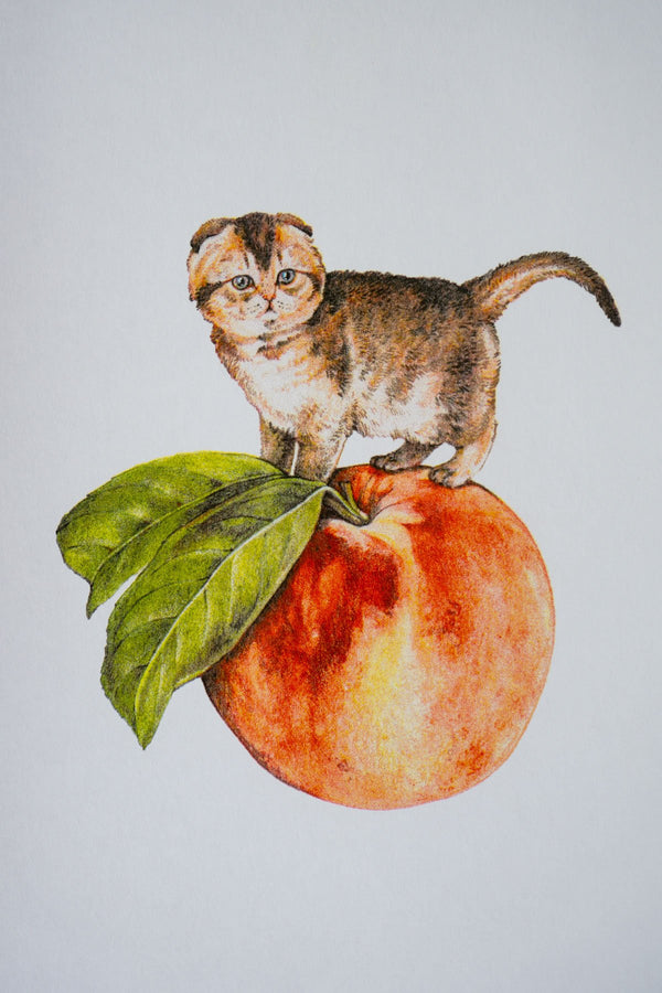 Peach Cat Riso Print by Stay Home Club