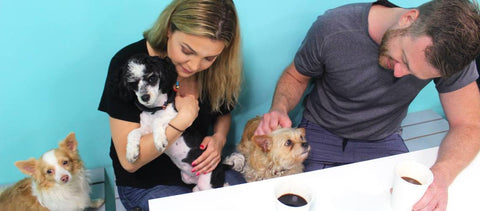 Couple sitting at a table playing with dogs at The Dog Cafe in Los Angeles
