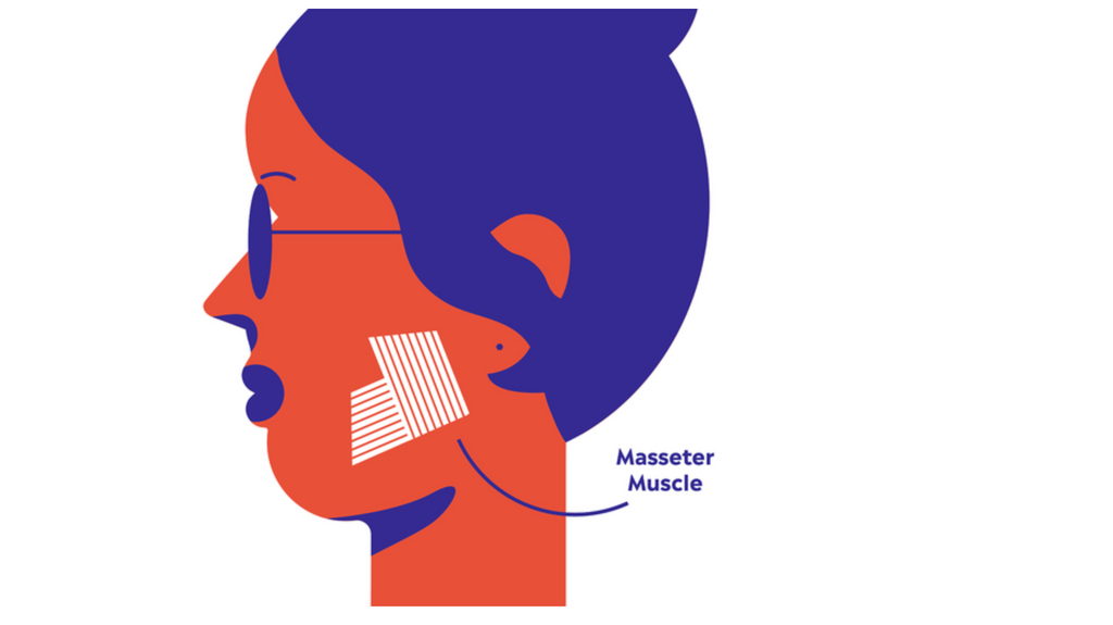 Cartoon of side profile of woman indicating location of masseter muscle