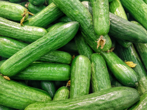 Many raw green cucumbers with skin intact