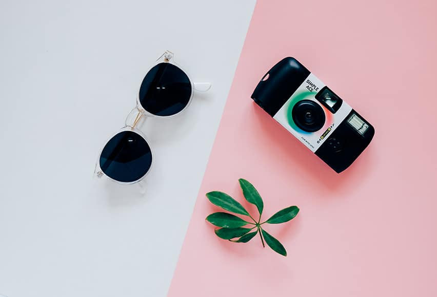 Disposable camera and sunglasses lying next to a sprig on a white and pink background