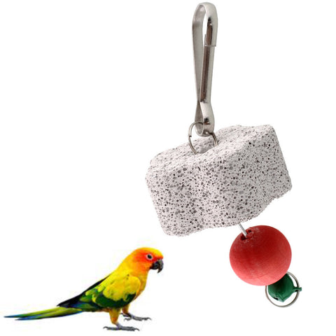 Parrot Bird Squirel Cage Chew