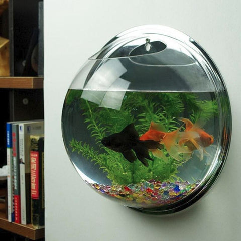 Wall Mounted Acrylic Fish Tank Hanging Aquarium Bowl