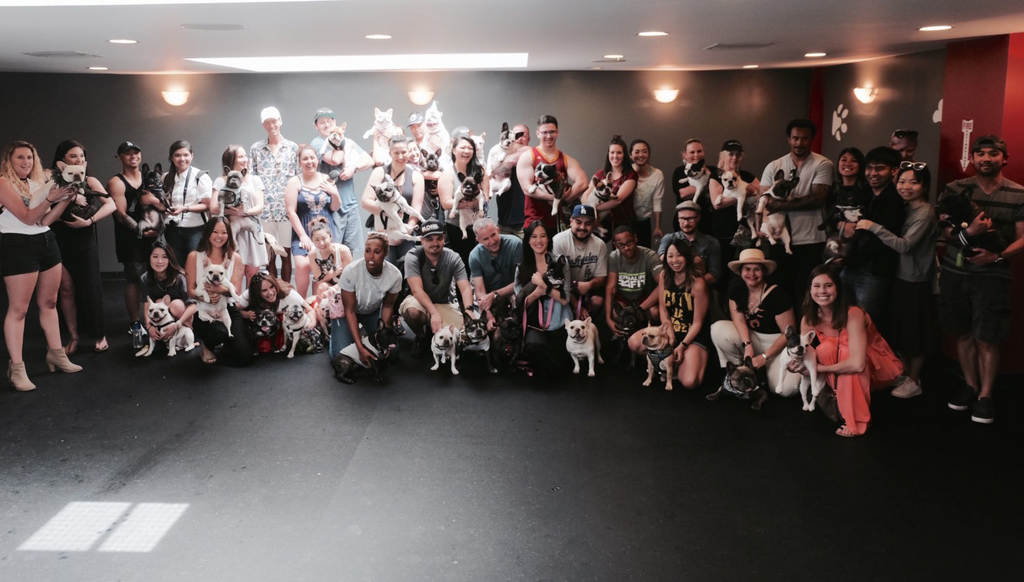 Full Service Dog Playhouse opens in West Hollywood