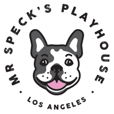 Mr Specks Playhouse