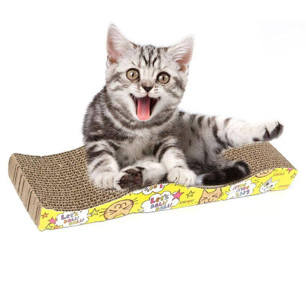 Cat Scratch Bed