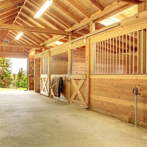 New Year Warrants New Definition of a Clean Barn