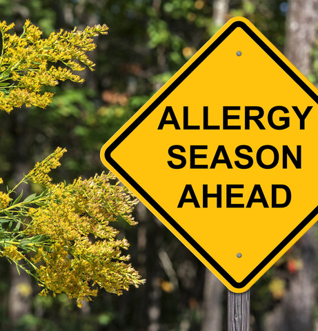 Get a Jump on Allergy Season