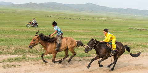 Katy Willings - Respiratory Challenges for the Mongolian Horse