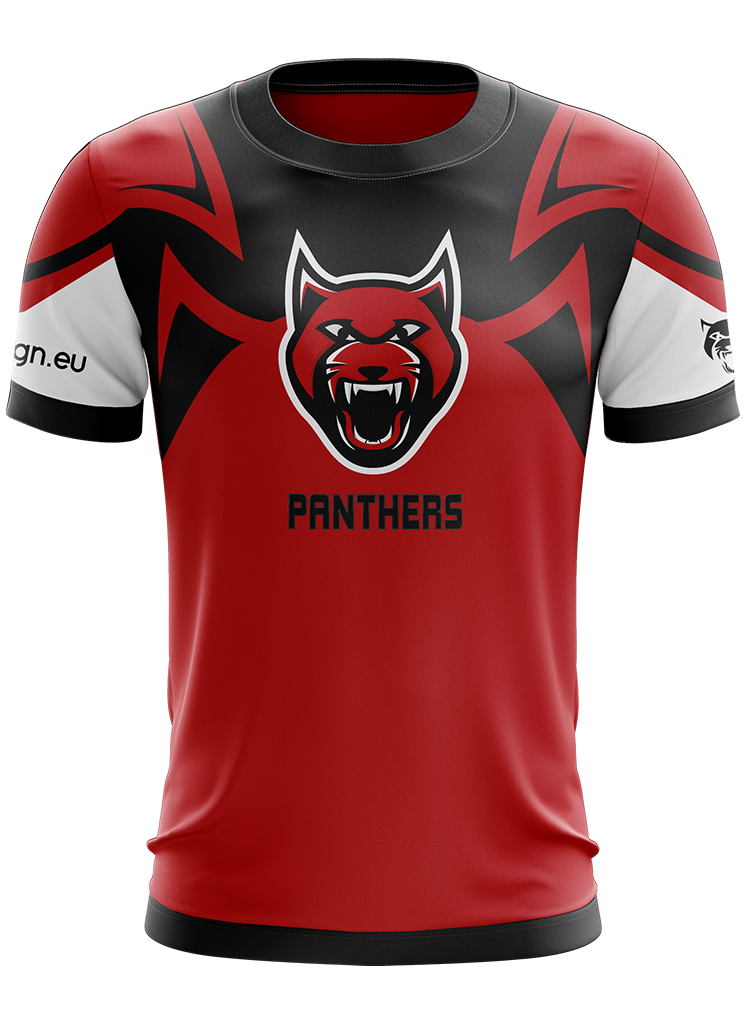 best sneakers 518b5 d7794 Panthers Jersey