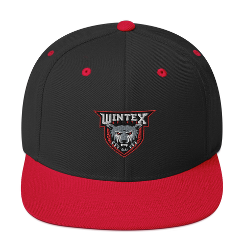 Wintex Sports Snapback Hat