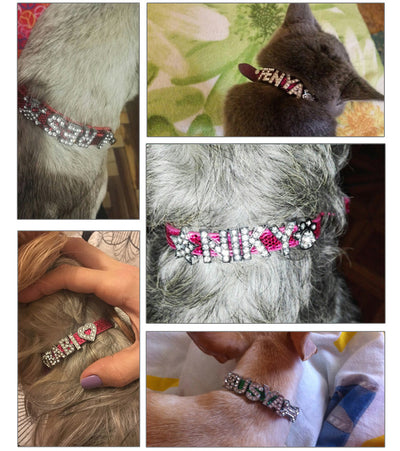 Brand Global Baby Bright Pu Leather Personalized Free 10MM Letters and Charms Named Pet Collar Necklace Dog Cat Collar - Direct Discount Outlet