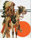 Cowgirl Kim Indian and His Horse A-Line Dress - In Stock