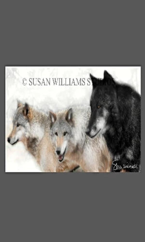 Susan Williams 3 Wolves Photograph on Canvas - Cowgirl Kim